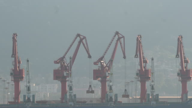 cranes working on container freight harbor