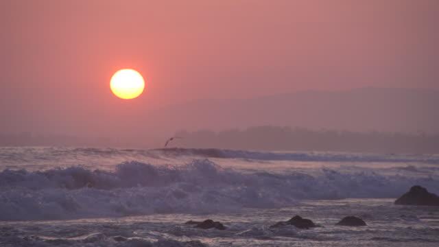 vídeos y material grabado en eventos de stock de crashing waves and birds flying at sunset in slow motion - santa bárbara