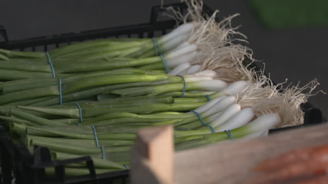 crate of spring onions in vegetable market, uk - bunch stock videos & royalty-free footage