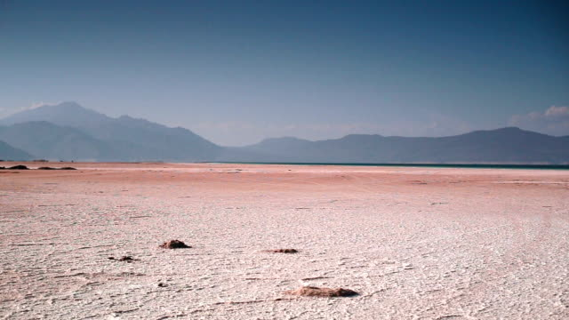 crater dry lake assal. surface covered with salt. - salt shaker stock videos and b-roll footage