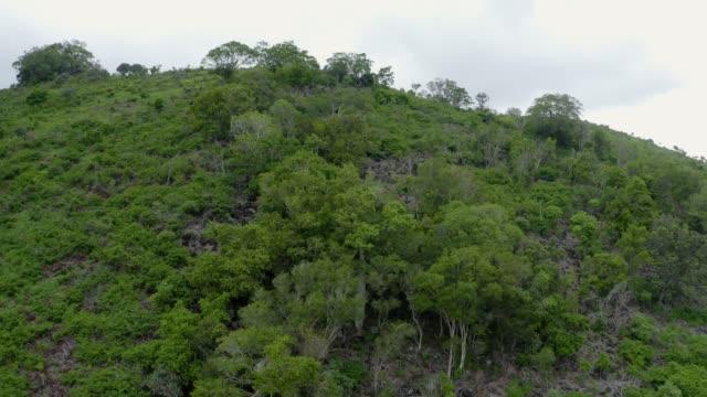 vídeos y material grabado en eventos de stock de crater lake - valle