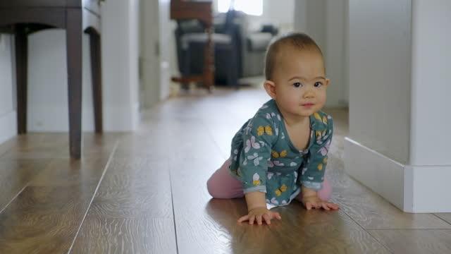 crawling baby - crawling stock videos & royalty-free footage