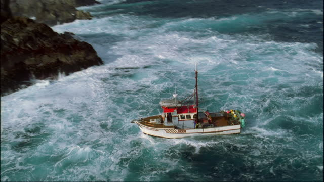 low aerial, cray fishing boat traveling along rocky coastline, fiordland national park, south island, new zealand - トロール船点の映像素材/bロール