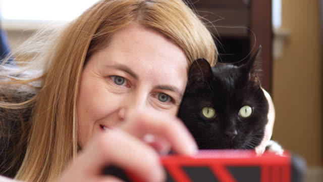 crazy cat lady taking selfies with kitty - only mature women stock videos and b-roll footage