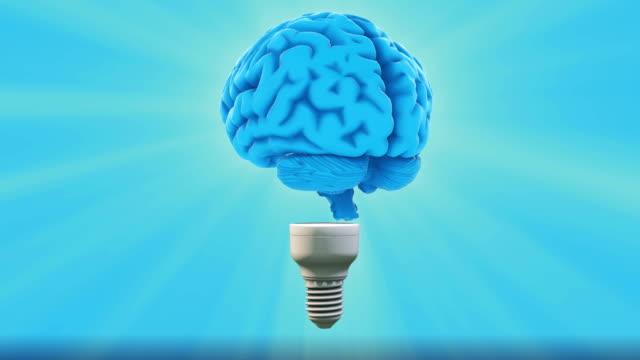 creative idea brain lightbulb - cerebellum stock videos & royalty-free footage