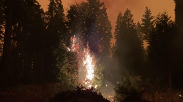 stockvideo's en b-roll-footage met creek fire at mammoth pool recreation area in the sierra nevada. - californian sierra nevada