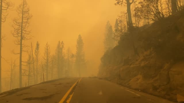 creek fire at mammoth pool recreation area in the sierra nevada mountain range, california, united states of america. - california stock videos & royalty-free footage