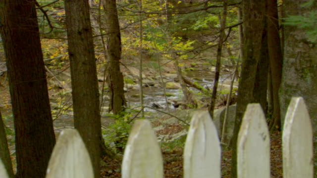 stockvideo's en b-roll-footage met ms, creek  in forest, picked fence in foreground, phoenicia, new york, usa - tuinhek