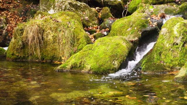 Creek in den Bergen