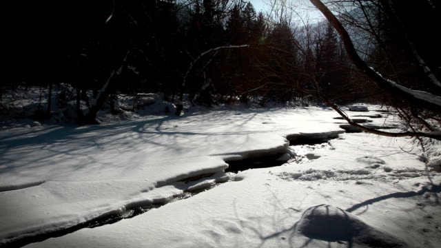 hd - creek in winter surrounded by woods - low lighting stock videos & royalty-free footage