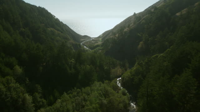 creek to ocean in california wilderness - wilderness stock videos and b-roll footage