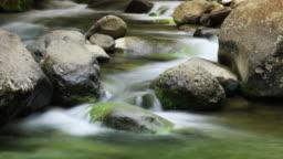 Creek Water (Stylized Time-lapse)