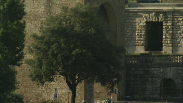 A crenellated parapet towers over a small tree growing beside it.