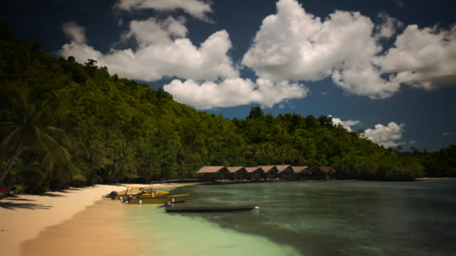 crescent beach on a lush exotic tropical island - papua new guinea stock videos and b-roll footage