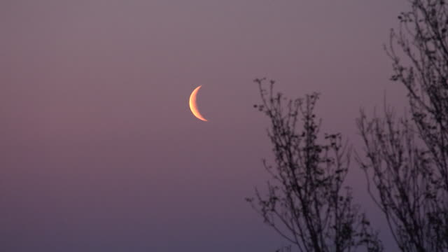 crescent moon before dawn - halbmond form stock-videos und b-roll-filmmaterial