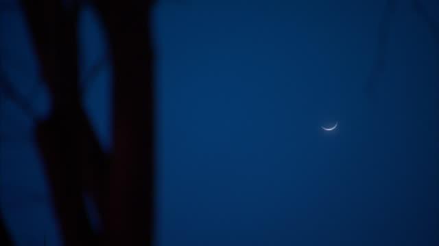 vídeos de stock, filmes e b-roll de a crescent moon glows in a blue sky. - espaço e astronomia
