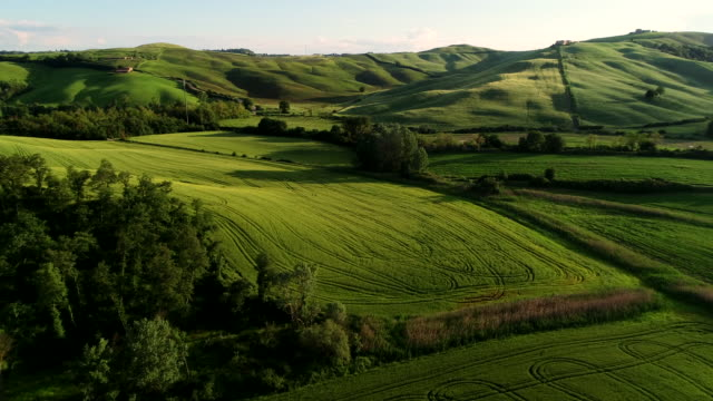 crete senesi countryside in spring, tuscany, italy - tuscany stock videos & royalty-free footage