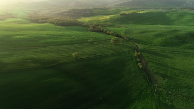 crete senesi countryside in spring, tuscany, italy - collina video stock e b–roll