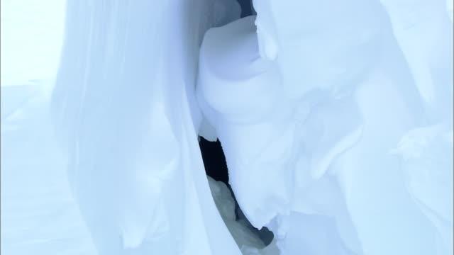 ms td crevasse and ice cave / ekstrã¶m ice shelfy,  queen maud land, antarctica - crevasse stock videos & royalty-free footage