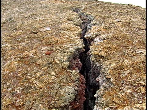 stockvideo's en b-roll-footage met a crevice splits a rock. - crevice