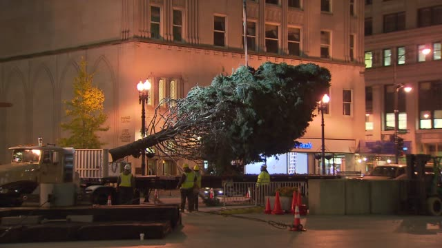 crews set up a colorado spruce for the 100th tree lighting ceremony in daley plaza crews lift christmas tree off truck at daley plaza on november 08... - christmas tree lighting ceremony stock videos & royalty-free footage
