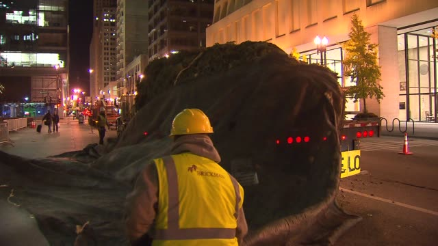 crews set up a colorado spruce for the 100th tree lighting ceremony in daley plaza crews lift christmas tree off truck at daley plaza on november 08... - クリスマスツリー点灯式点の映像素材/bロール