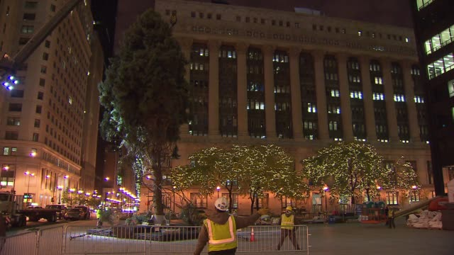 crews set up a colorado spruce for the 100th tree lighting ceremony in daley plaza workers hoist christmas tree at daley plaza on november 08 2013 in... - クリスマスツリー点灯式点の映像素材/bロール