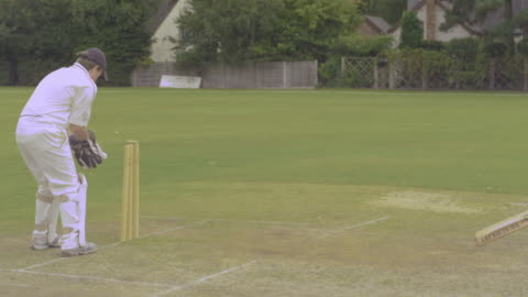 cricket, ball thrown from fielder out of frame hits the stumps directly and batsman is run out - fielder stock videos & royalty-free footage
