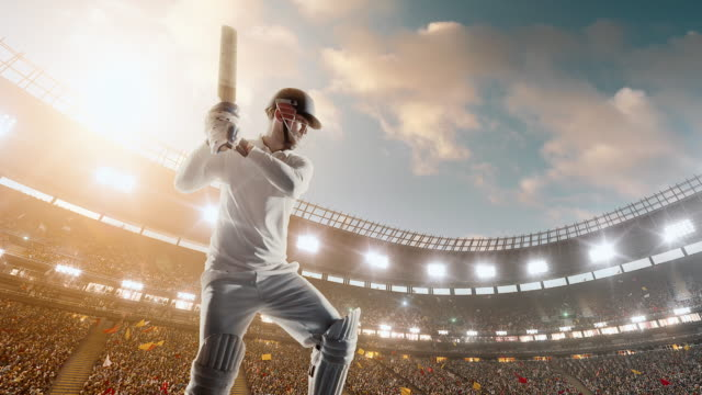 cricket player on professional cricket stadium - cricket video stock e b–roll