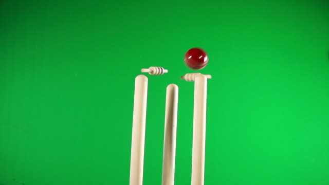 cricket wickets bowled out - white stumps, flashing bails green screen chromakey - sport of cricket stock videos and b-roll footage