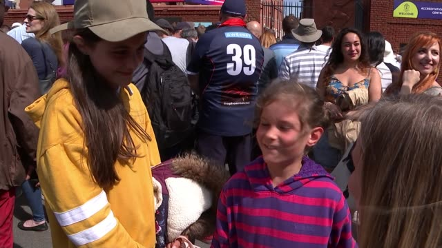 cricket world cup: england win opening match against south africa; england: london: the oval: ext cricket fans gathered outside the oval vox pops... - sold out stock videos & royalty-free footage