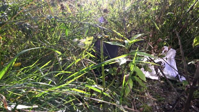 vídeos y material grabado en eventos de stock de crime - ladies underwear and handbag in the meadow - camisola