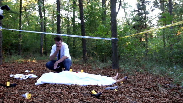 crime scene in nature - named wilderness area stock videos & royalty-free footage