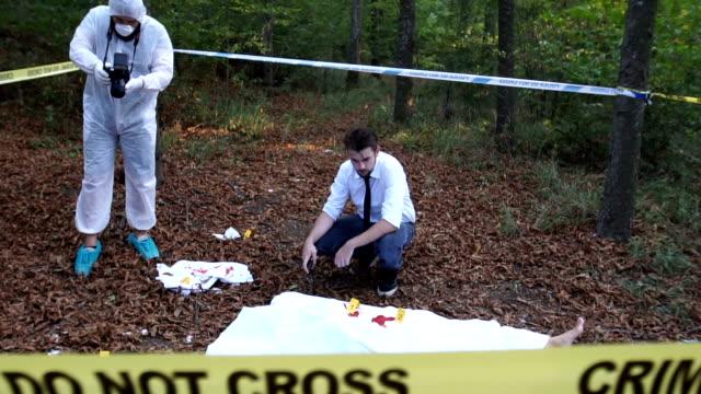 Crime scene in the wild