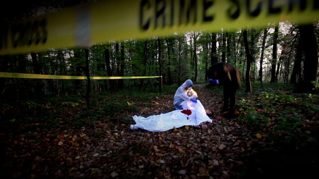 crime scene investigation - murder stock videos & royalty-free footage