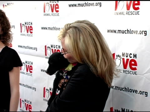 crista flanagan and rachael harris at the 4th annual much love animal rescue celebrity comedy benefit at the laugh factory in hollywood california on... - rachael harris stock videos and b-roll footage