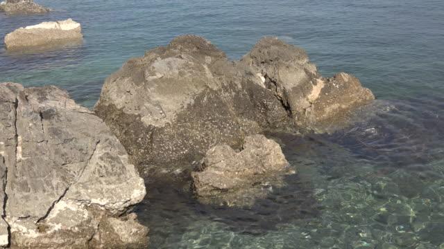 vídeos de stock, filmes e b-roll de croatia adriatic sea rocks at low tide - vazante
