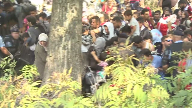 croatia is at the centre of the migration crisis tonight with thousands of people heading to its border from serbia refugees desperate to reach... - emigration and immigration stock videos & royalty-free footage