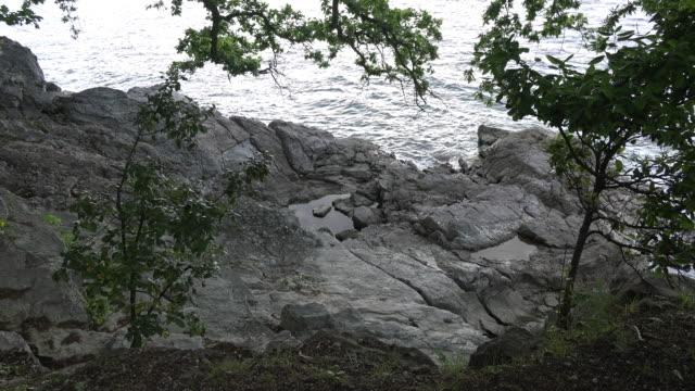 vídeos de stock, filmes e b-roll de croatia rocks with tide pool below at low tide - vazante