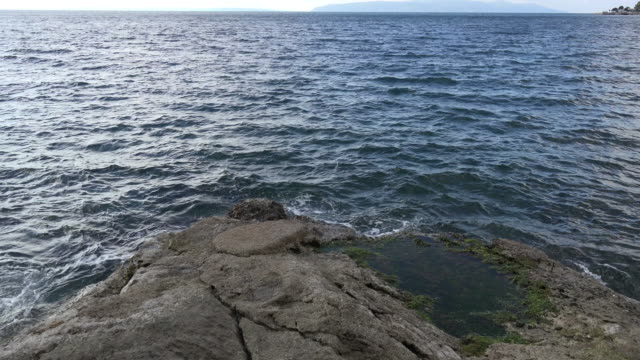 vídeos de stock, filmes e b-roll de croatia tide pool in rocks at low tide - vazante
