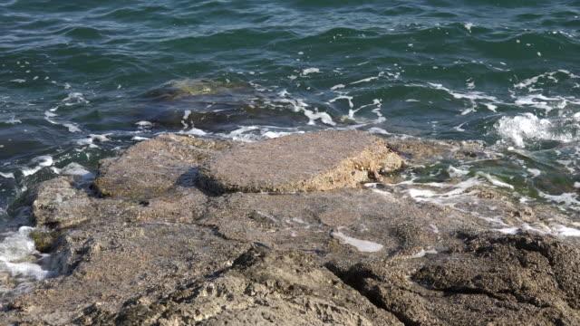 vídeos de stock, filmes e b-roll de croatia waves break on flat rock at high tide sound - vazante