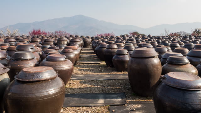 crocks in cheong plum farm, gwangyang maehwa village (filled with plum trees following seomjin river), jeollanam-do, south korea - stone object stock videos & royalty-free footage