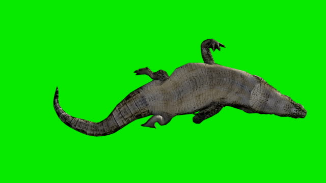 Crocodile Attack Green Screen (Loopable)