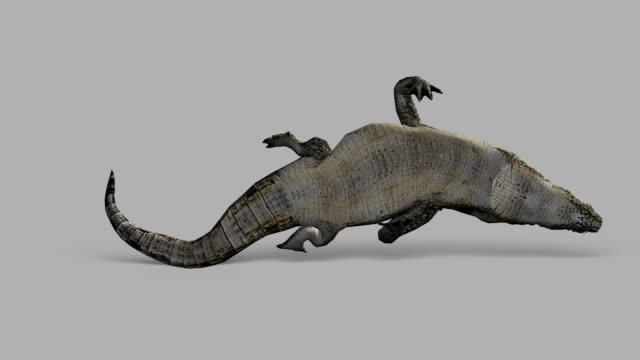 krokodilleder angriff mit alpha-kanal (endlos wiederholbar - echte krokodile stock-videos und b-roll-filmmaterial