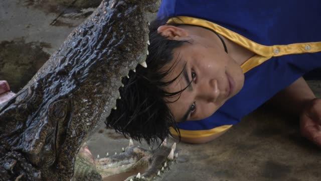 stockvideo's en b-roll-footage met crocodile wrestlers perform stunts during a show at the samphran elephant ground zoo in bangkok - dierentrucs