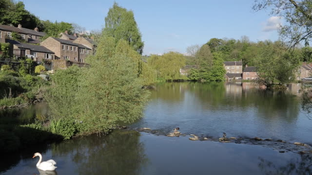 Cromford Pond, Cromford, Matlock, Derbyshire, England, UK, Europe