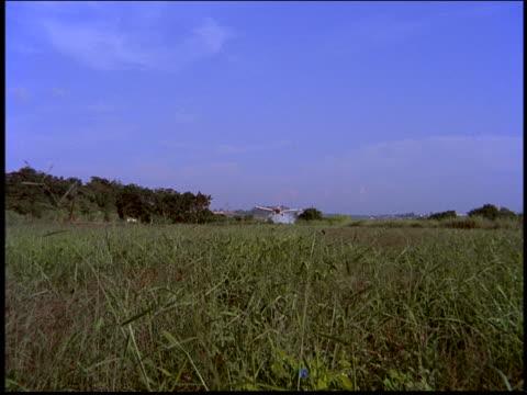 vídeos y material grabado en eventos de stock de crop duster flying low over green field dropping pesticide toward camera / brazil - insecticida