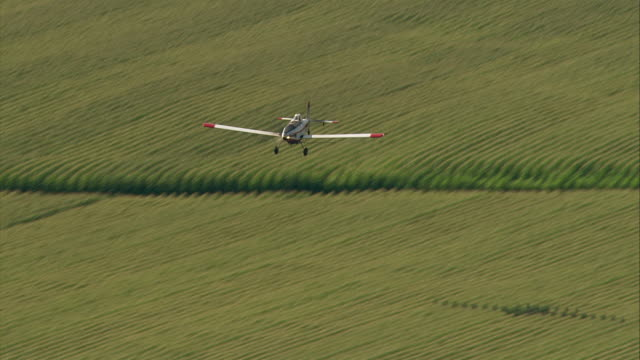 a crop duster sprays pesticides over a green field. - insecticide stock videos & royalty-free footage