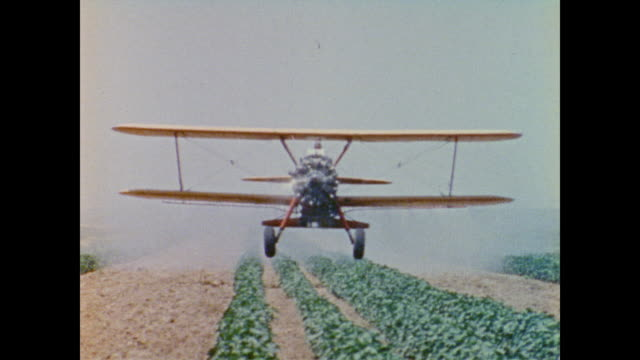 crop dusting biplane flies over the crops towards the camera - insecticide stock videos & royalty-free footage