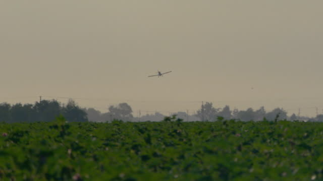 crop dusting plane coming around for another pass - insecticide stock videos & royalty-free footage